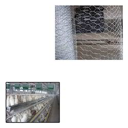 Chicken Mesh for Poultry Cage