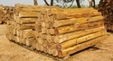 Teak Rough Square Logs