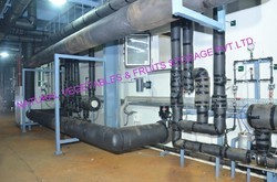 Turnkey Solutions for Frozen Plant Machines
