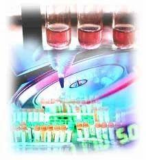 Liver Blood Tests