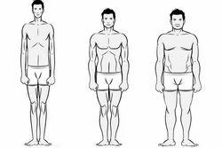 Body Type Management