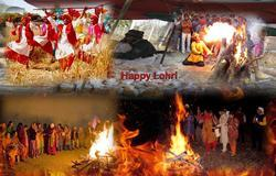 Lohri Festival 2015 Celebrations & Events