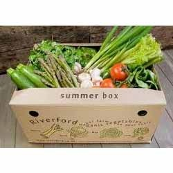 Vegetable Corrugated Carton Box