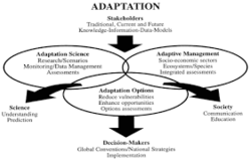 Data Adaptation