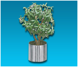 Stainless Steel Pedal Planter Pot