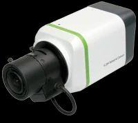 Standard Box IP Camera
