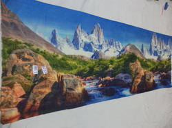 Pure Woolen Natural Scenery Digital Prints Stoles