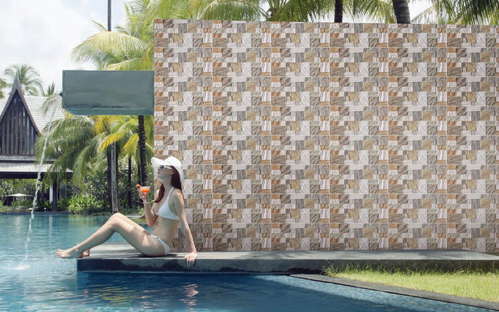 Wall Tiles Kitchen Tiles Trader Supplier from Delhi
