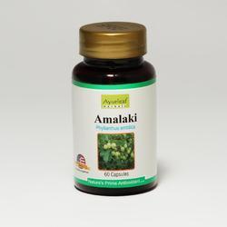 Herbal Immunity Enhancer