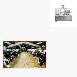 Glass Packing Machine for Dairy Farm
