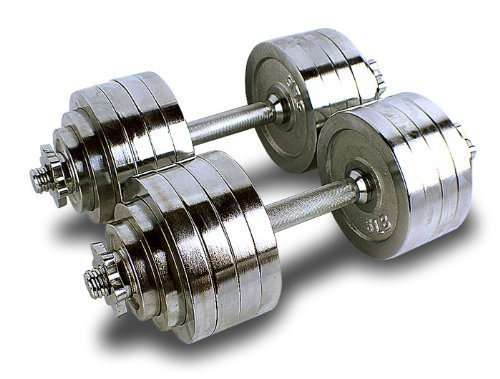 Metal Dumbbells at Rs 230/kilogram(s)   Dumbbell Set, Gym Dumbbell, PVC  Dumbbell, डम्बेल्स - Techfit, Mumbai   ID: 9198700091