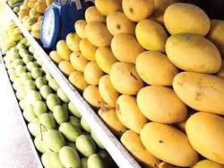 Mango Processing Plant Consultancy Services