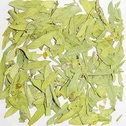Senna Leaf & Cassia Angustifolia Vahl