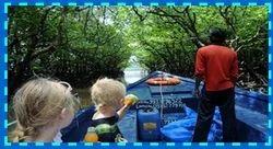 Mangrove Creek Safari