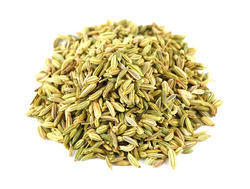 Sugar Coated Fennel