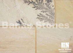 Banas Fossil Sandstone