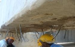 Building Repair Consultants and Contractors