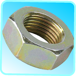 TMA Machined Hex Nut, Size: 2 Inch