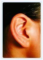 Ear Correction (Otoplasty)