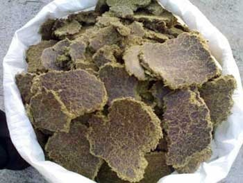 Om Sai Oil Industries - Manufacturer of Cotton Seed Cake