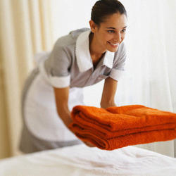 Domestic Hotels Services