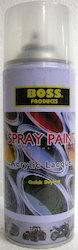 Aerosol Spray Paints Clear Shade Touchup No Brush No Motor
