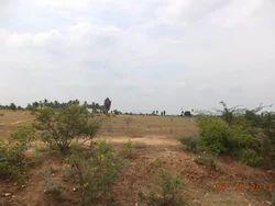 Kurichi Pirivu, Tirupur