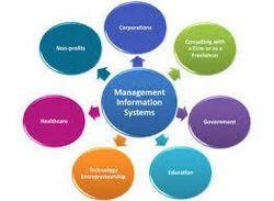 management information systems mis development service octal