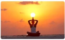 Yoga And Meditation Tours Package Service