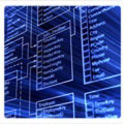 BPO/ITES/IT Management