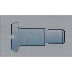 Slotted Pan Head Screws