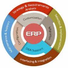 ERP Customization and Integration
