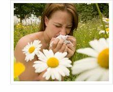 Allergy Treatment Service