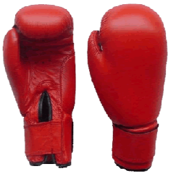 Image result for boxing glove