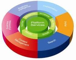 Platform Migration