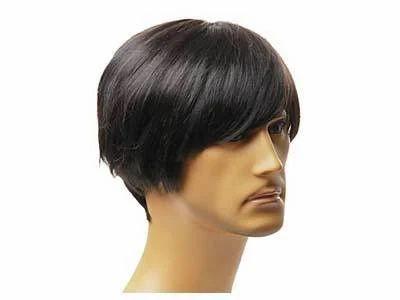 Mens Human Hair Wigs