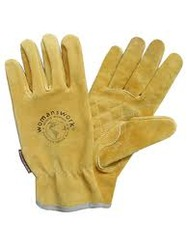 Cotton Garden Glove Manufacturers Suppliers Wholesalers