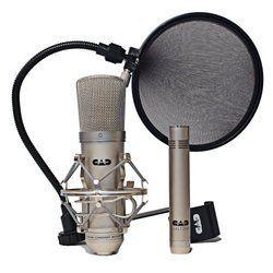 lanen v 85 dynamic mic