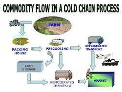 Cold Chain Project Reports