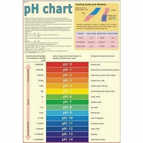 Ph Chart At Rs  PieceS  Daryaganj  New Delhi  Id