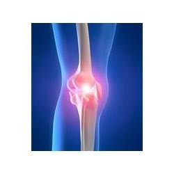 Jointok Powder for Total Joint Pain Solution