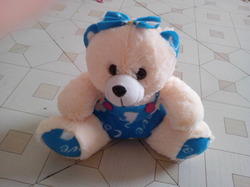 Cap Teddy Bear