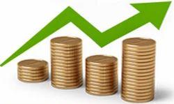 Stock Cash Investment Advisory