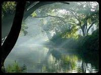 Munnar with Backwaters