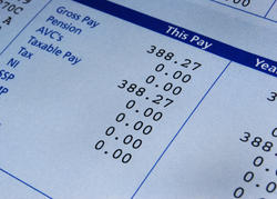 Pay Slips Structuring Plan Services