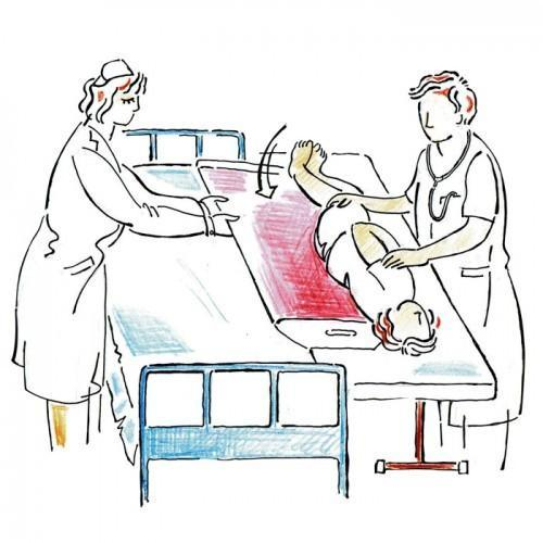 Bio X Blue Patient Transfer Bed Size 1 5 X 6 Rs 15000