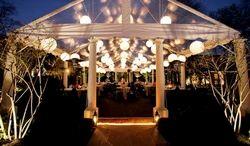 Wedding light barat light manufacturers suppliers wedding decoration light junglespirit Image collections