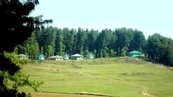 Image result for shiv khori