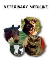 Veterinary Pharma Franchise in Kerela