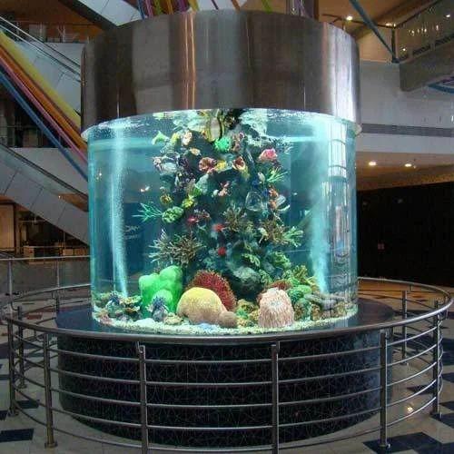 Frame Aquarium Cylindrical Aquarium Manufacturer From Mumbai